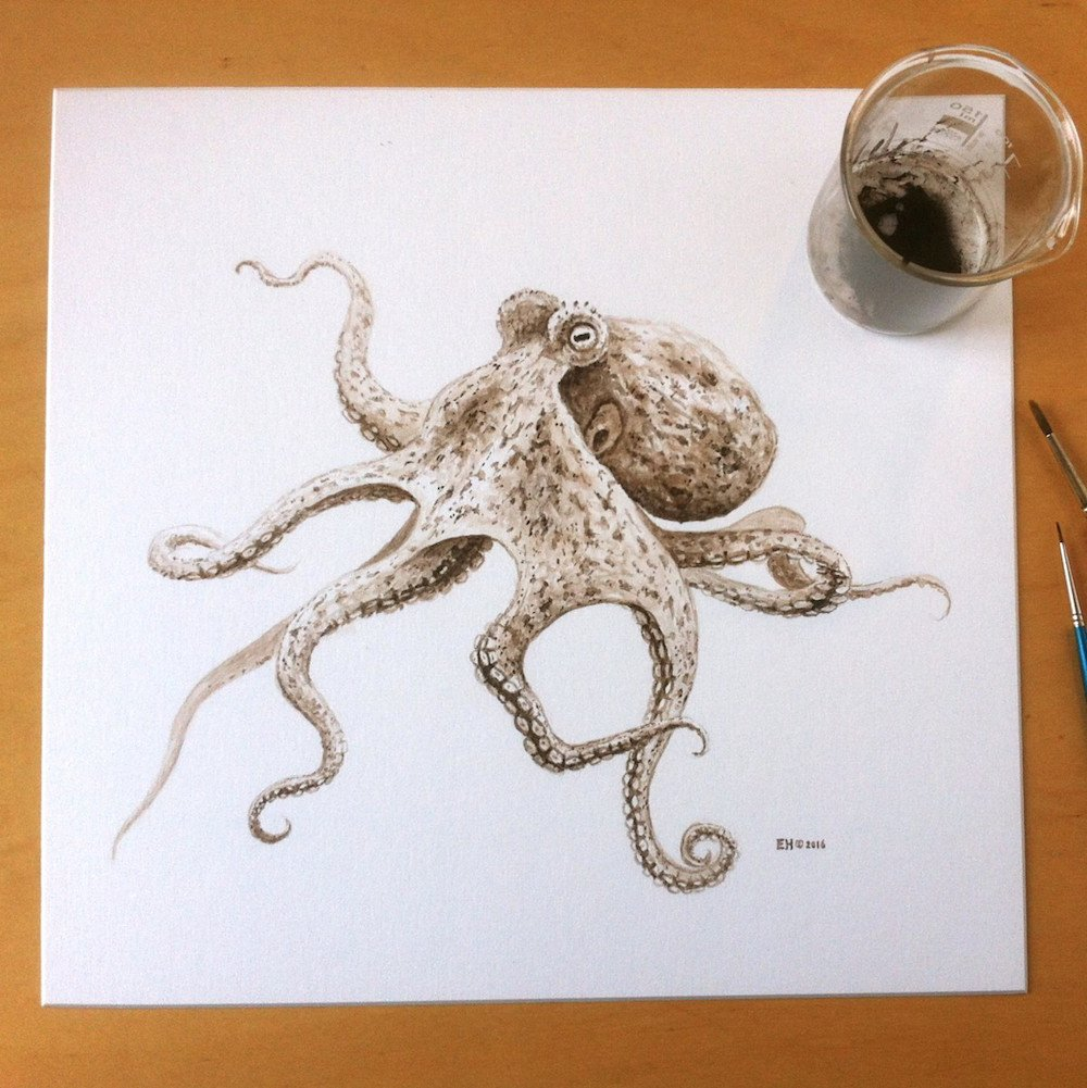 An Octopus Painted With 95-Million-Year-...