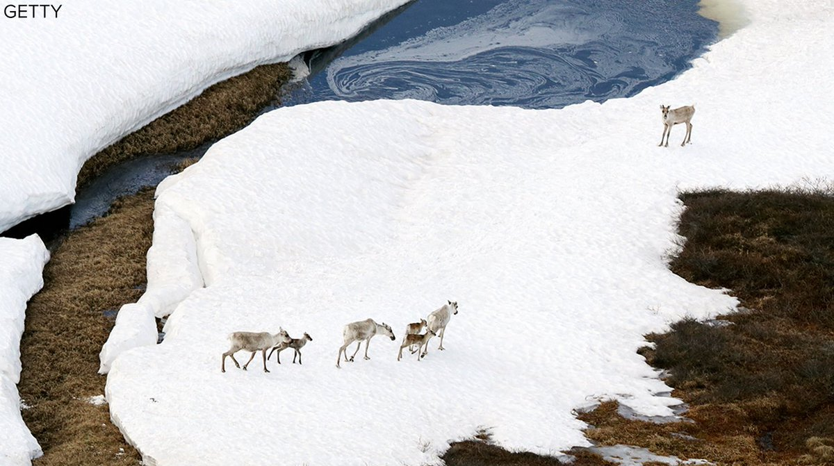 Democrats, environmental groups slam GOP plan to allow oil, gas drilling in Alaska's Arctic National Wildlife Refuge https://t.co/XWCqBwBh2y