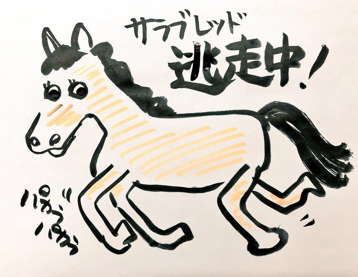 【競馬】愛知県でサラブレッドが逃走中wwwwwwwwwwww