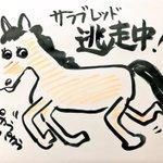 【お知らせ】10月17日午後5時頃から18日午前8時頃にかけて、瀬戸市片草町地内から馬(サラブレッド…