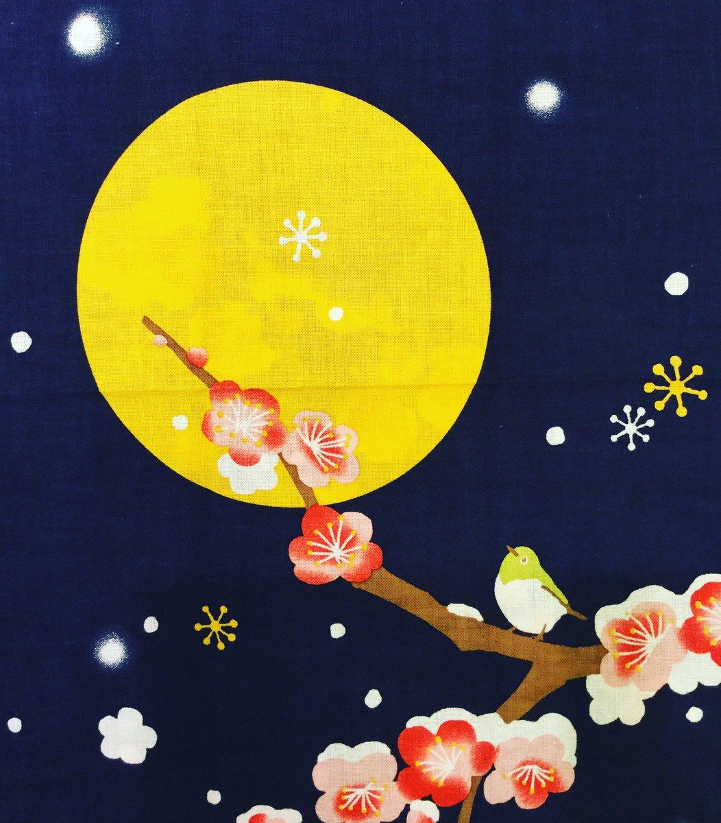 """チューブ 溶岩 月に""""宝の洞窟""""が!? 無限の可能性を秘めた地下に続く「スカイライト(天窓)」"""