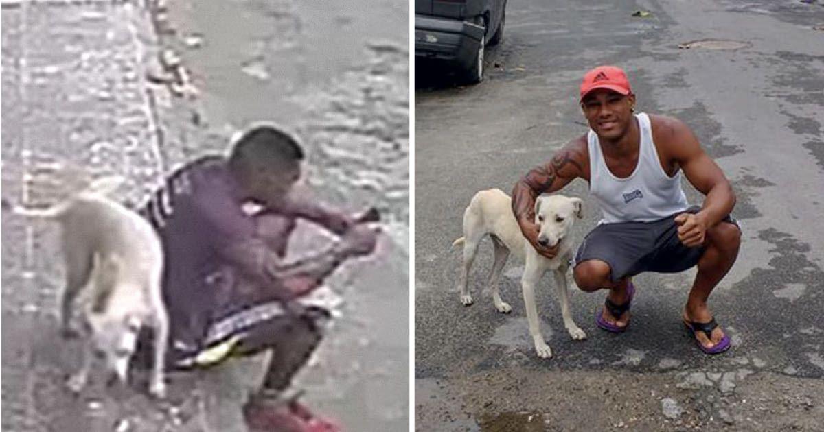 """Résultat de recherche d'images pour """"This Man Has The Best Reactions When He Catches A Dog Peeing On His Back"""""""