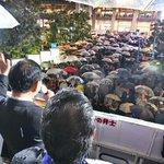 福岡・博多駅前で訴え。雨の中、多くの皆さんが足を止め、熱心に聴いてくださいました。演説が終わると、凄…
