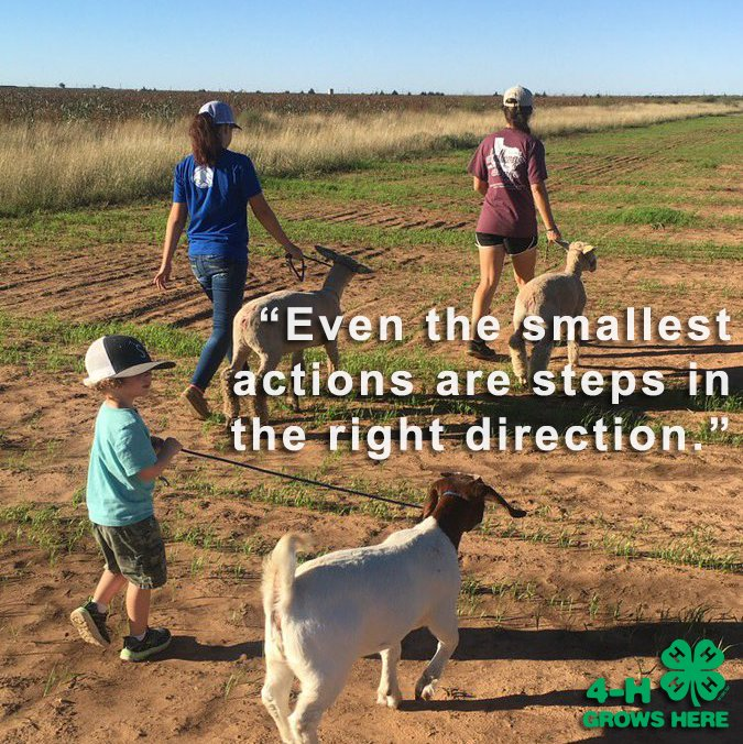 """""""Even the smallest actions are steps in..."""