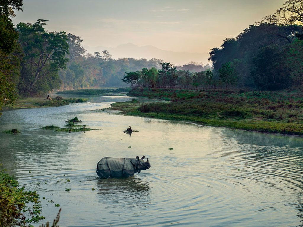 Exploring the Chitwan National Park on foot results in meetings with 18-ft pythons, rhinos and wild boars. #Nepal    http://www. natgeotraveller.in/chitwan-nation al-park-guide-walking-with-pythons-and-rhinos-in-the-wild/ &nbsp; … <br>http://pic.twitter.com/w9aSE9LH1U
