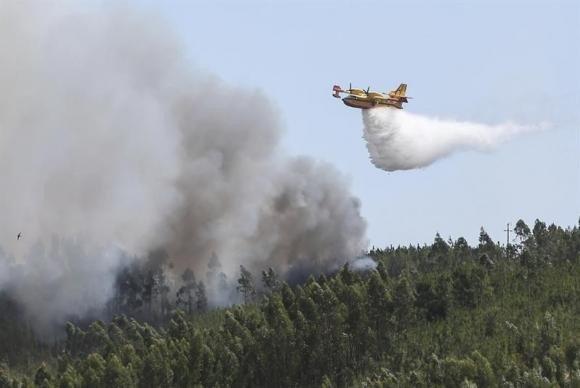 Incêndios em Portugal levam ministra da Administração a pedir demissão https://t.co/KaPGGVkSsI  📷Miguel Lopes/EFE/©