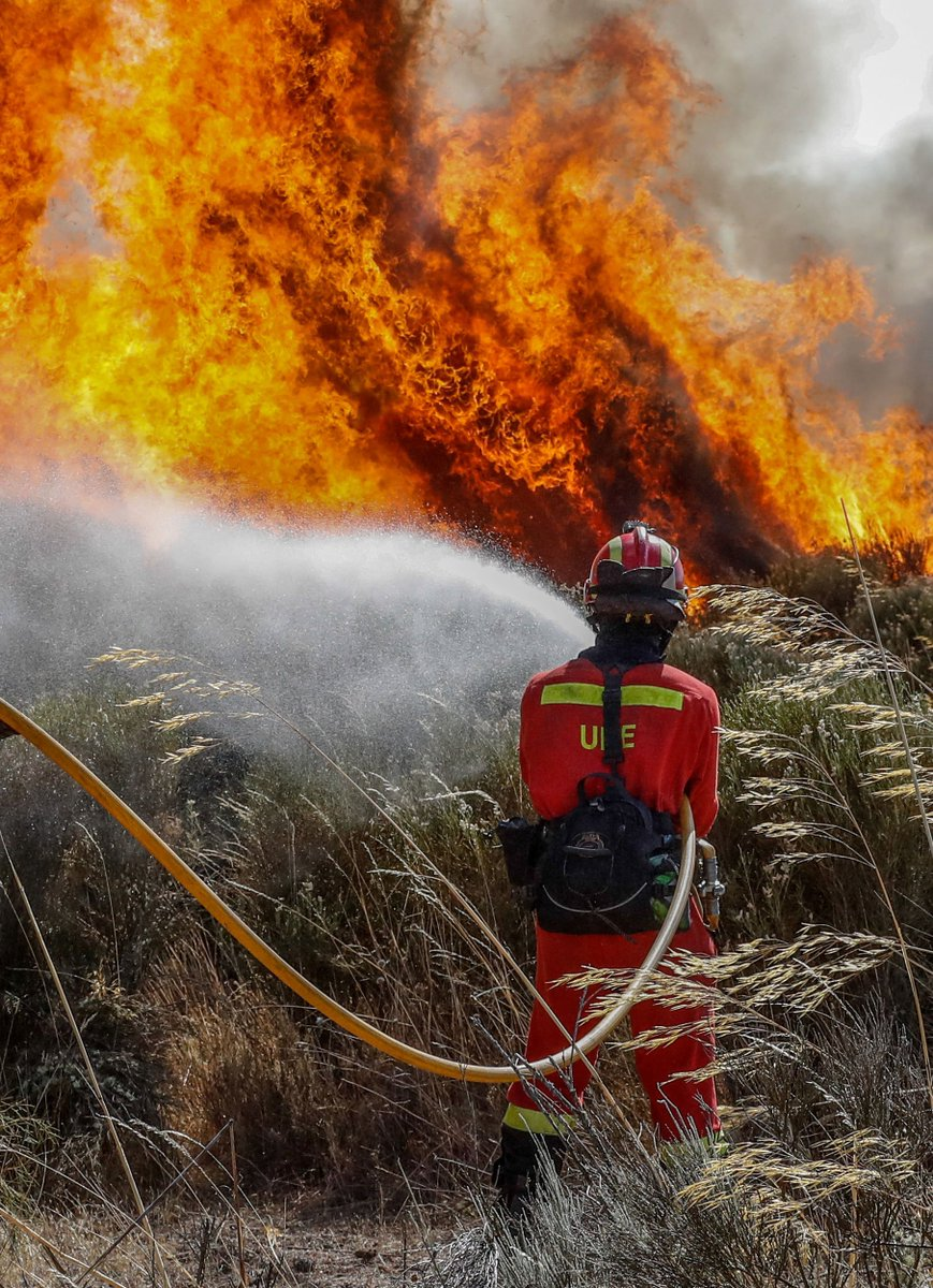 La @UMEgob, sin tregua contra el fuego 🔥...