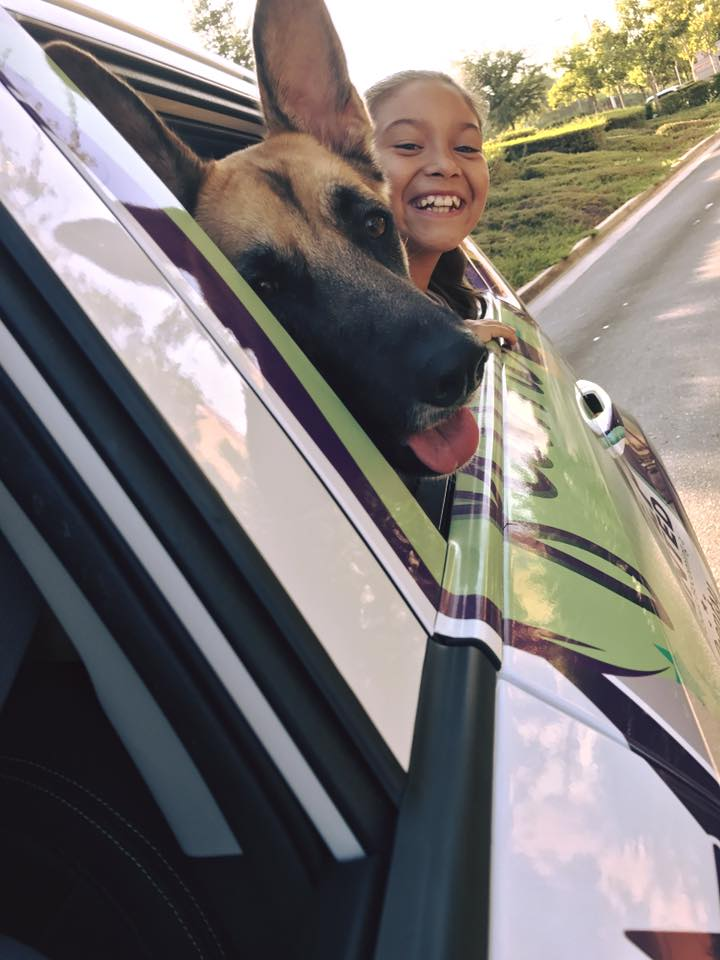 #IfItWerentForDogs We wouldn&#39;t know how great it felt to stick our head out the car window. #EnjoyLife #LoseTheFlame<br>http://pic.twitter.com/B5O8gerH2L