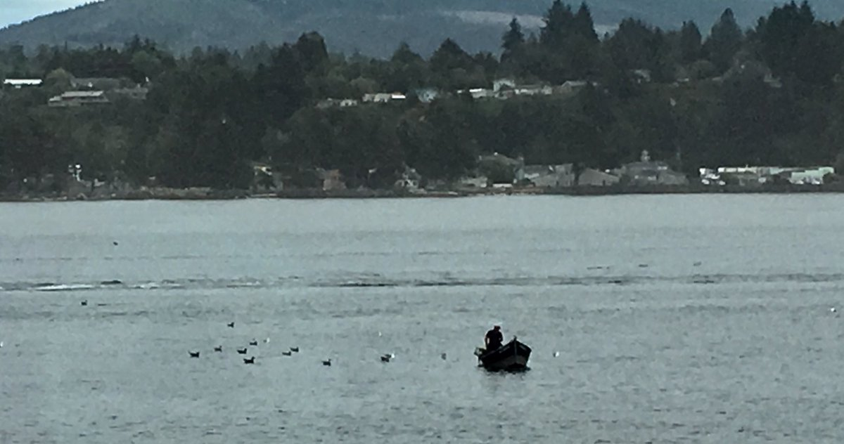 #Oregon Coast, Waldport last month. Sleeping beauty! <br>http://pic.twitter.com/dZMZAg0rRs