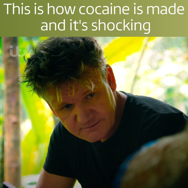 You won't believe what goes into making cocaine.  #GordonOnCocaine. To...