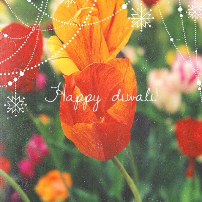 Happy Diwali everyone ☺️❤️ https://t.co/wToPRWE0NH