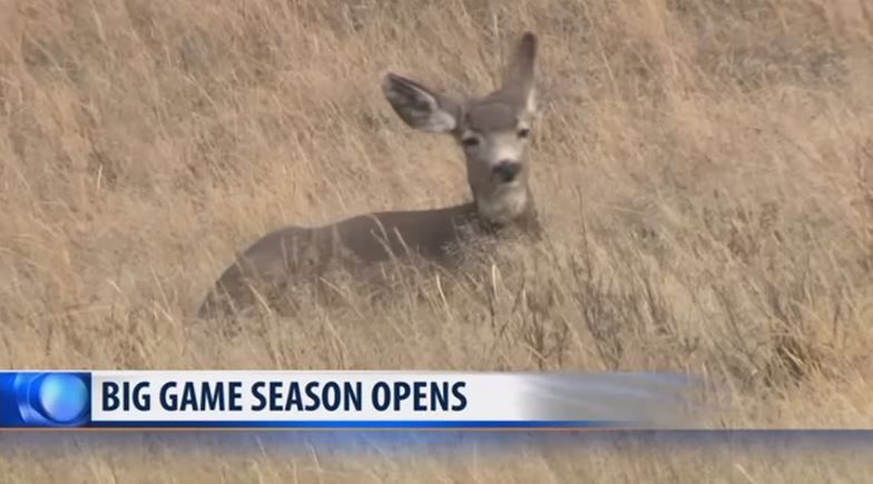 Young #hunters getting a head start on big game #season: https://t.co/0yVOsg1sXU