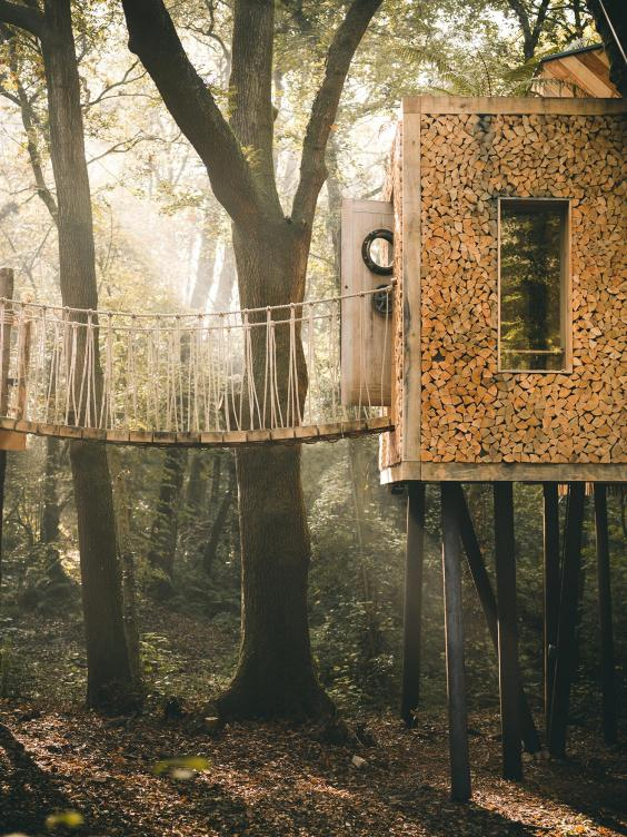 Inside the two-storey woodland treehouse up for House of the Year https://t.co/0YQtIDDnJV