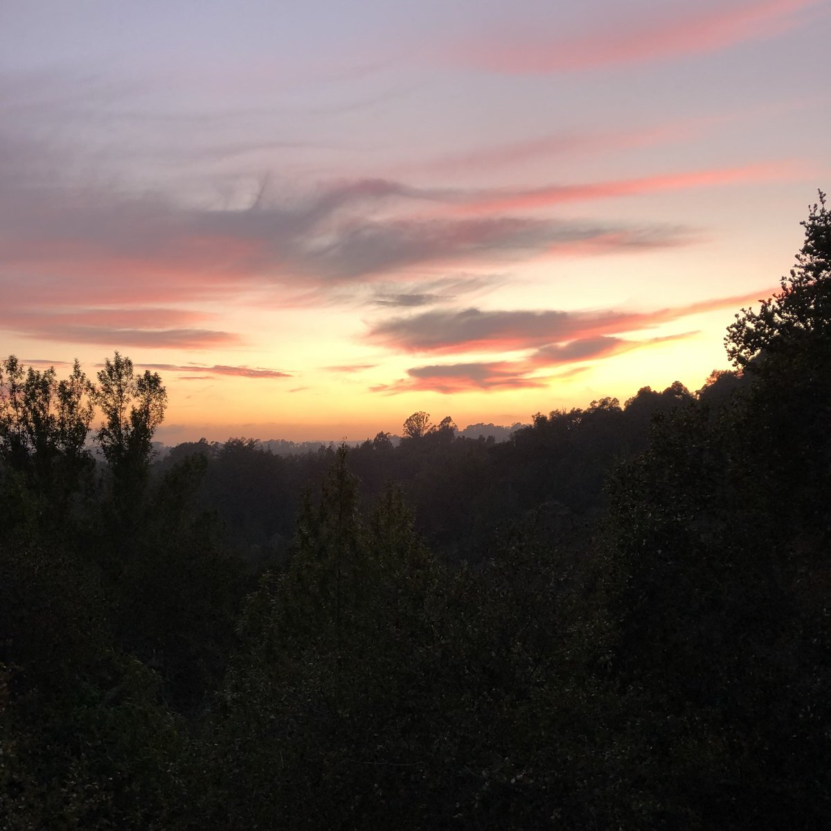 Summation of a day in residence. #amwriting #ya #author #authorslife #residency #sunset #create<br>http://pic.twitter.com/bbw0lgiXVJ