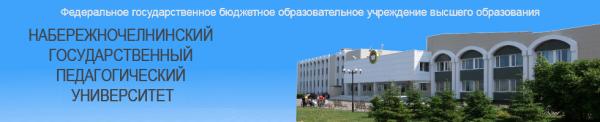 Заключение руководителя практики о кафедры педагогики в детском саду