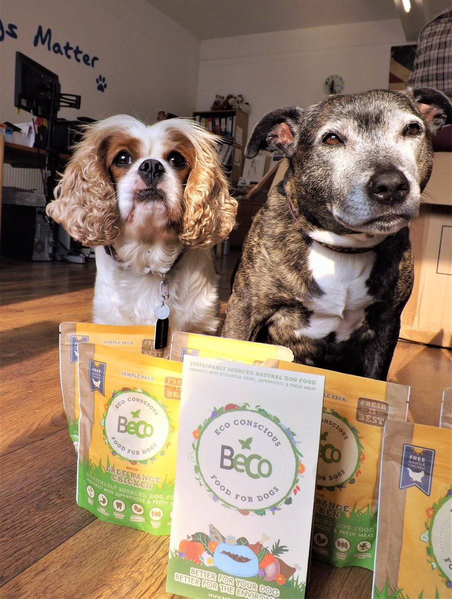 What are the goodies for dogs 73