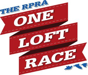 test Twitter Media - Best be quick - the RPRA One Loft 2017 Young Bird auction ends on Sunday evening: https://t.co/ZXBI6bfOBY https://t.co/SbO2Neddvr
