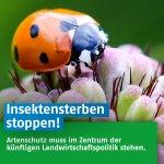 Keinen Zweifel: Wissenschaftler bestätigen rasantes #Insektensterben in Deutschland: https://t.co/EfmQuSD5VY #Landwirtschaft #Pestizide