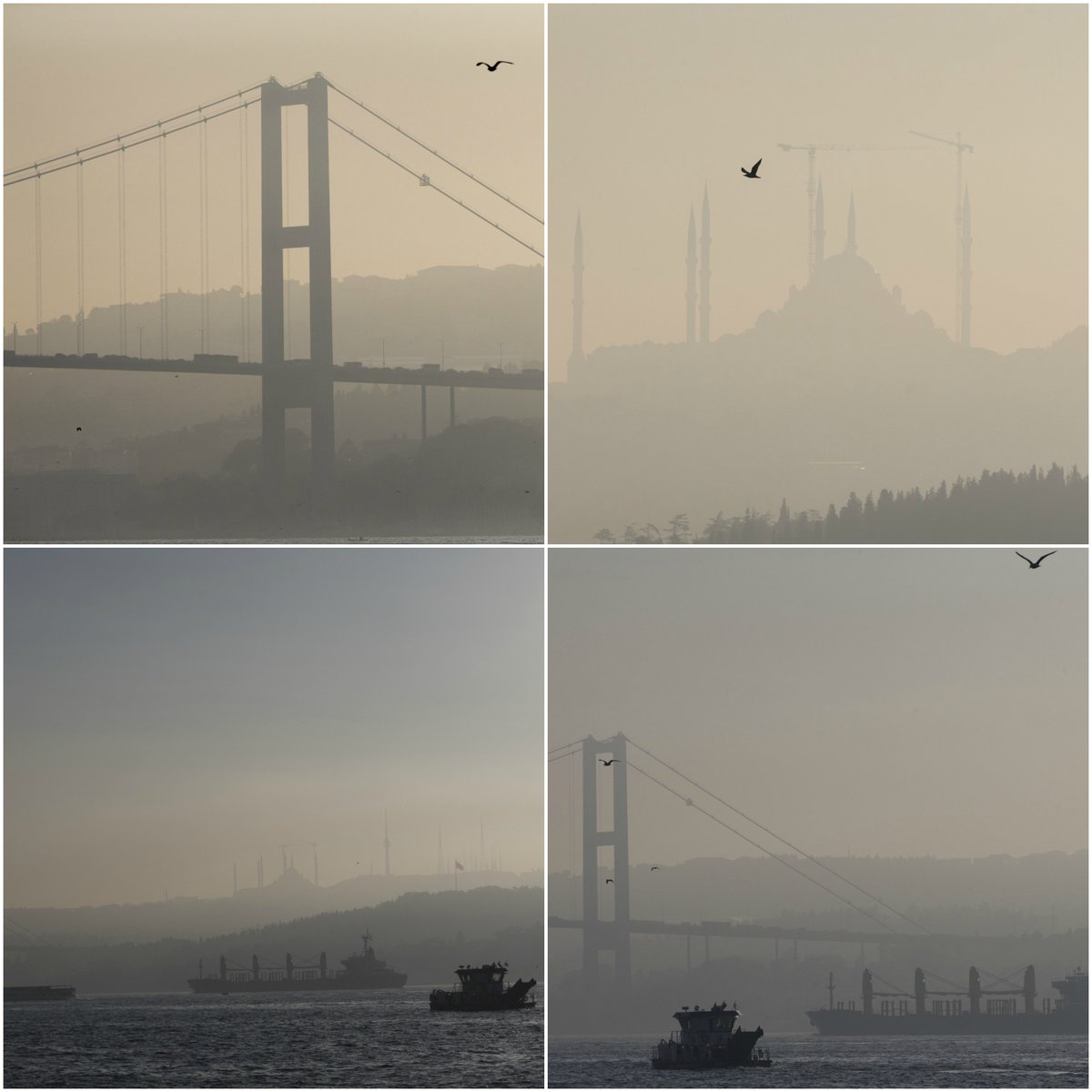 The misty days of #Istanbul https://t.co...