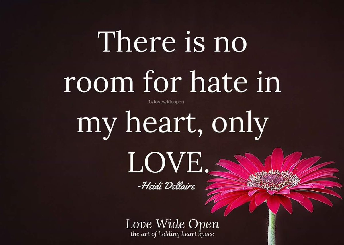 no hate quotes