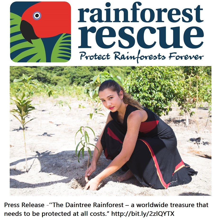 "#PressRelease - ''The Daintree Rainforest – a worldwide treasure that needs to be protected..."" http:// bit.ly/2zlQYTX  &nbsp;     @RainforestRescu<br>http://pic.twitter.com/prRDdNOQil"