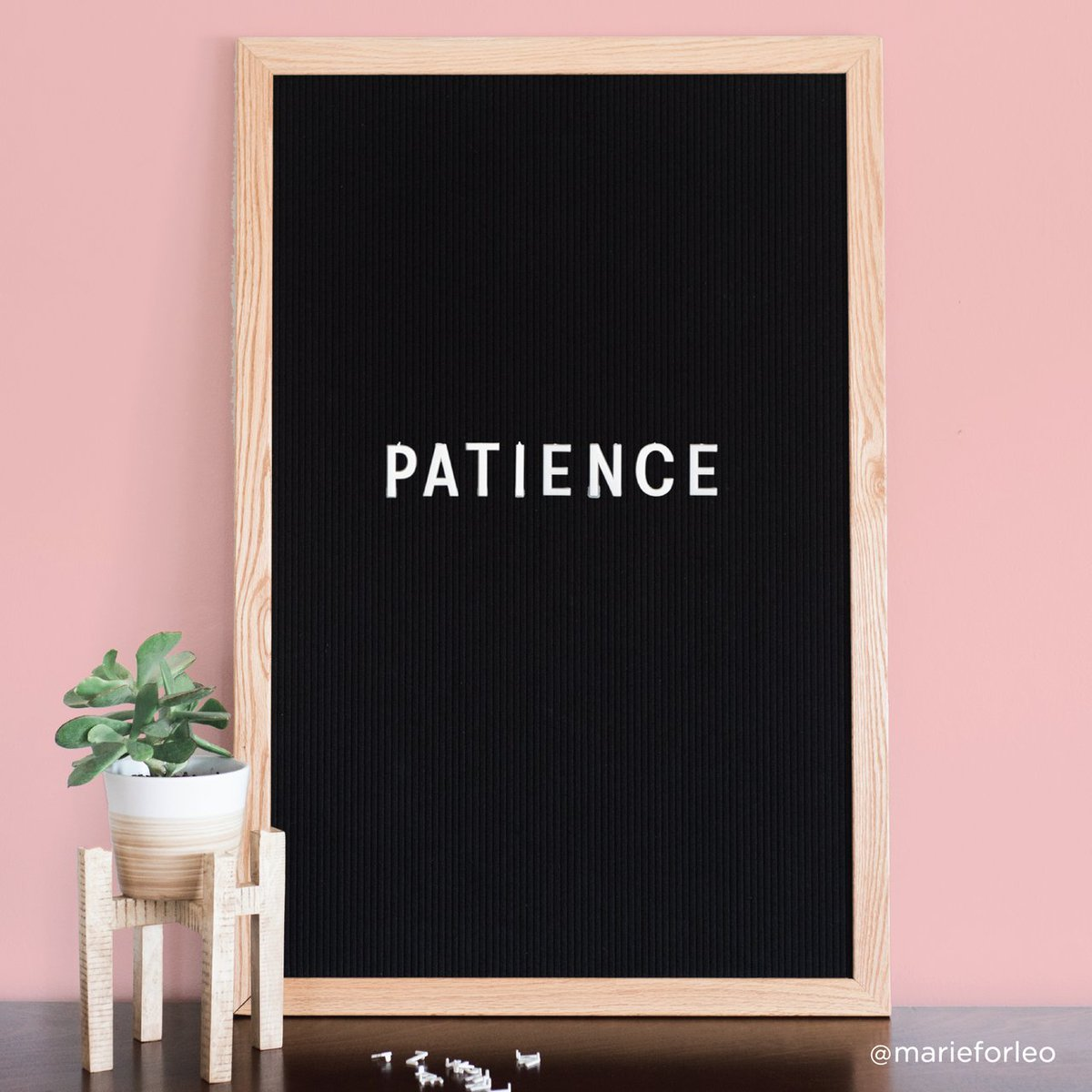 When you&#39;re just starting out, #patience is the MOST important thing to cultivate.     #businessadvice<br>http://pic.twitter.com/lJxTRbz5mf