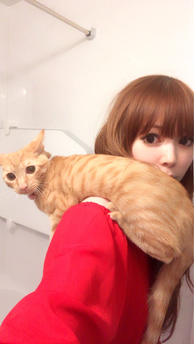 猫好き中川翔子