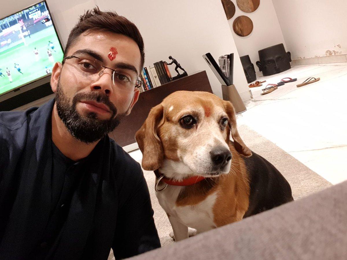 Image result for virat kohli dog