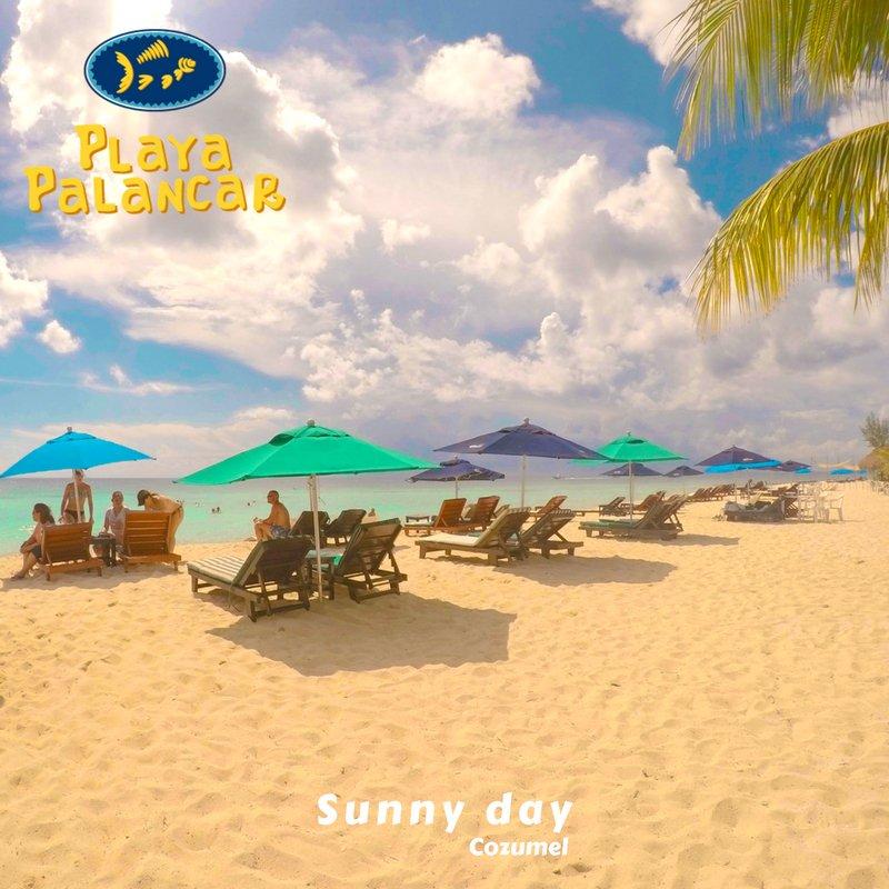 Beautiful and sunny day in #Cozumel, #México #PlayaPalancar #HappyThursday #FelizJueves #Tbt <br>http://pic.twitter.com/jFZPJi2INx