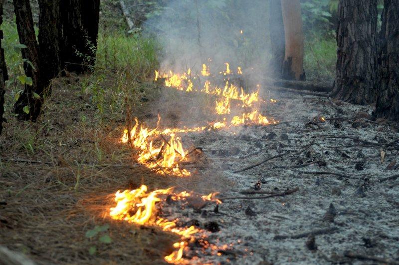 Sem proibição, volta a crescer número de queimadas em Mato Grosso. https://t.co/TgHr5pbaNz  📷Arquivo/ABr