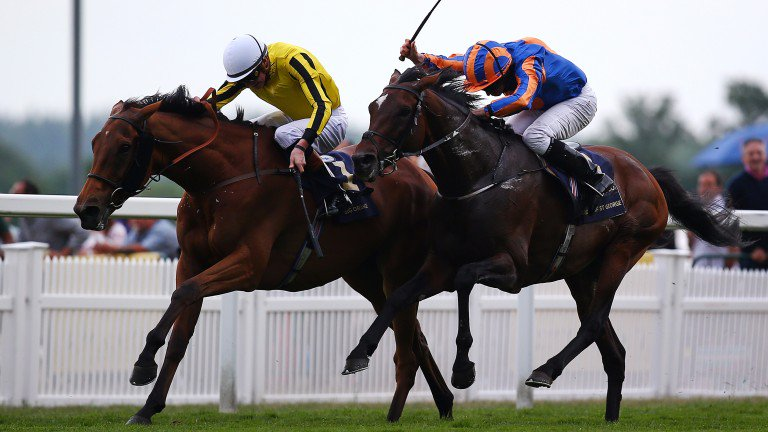 Three Royal Ascot heroes bidding to double up on Champions Day >>>https://t.co/FupAKrwOR7