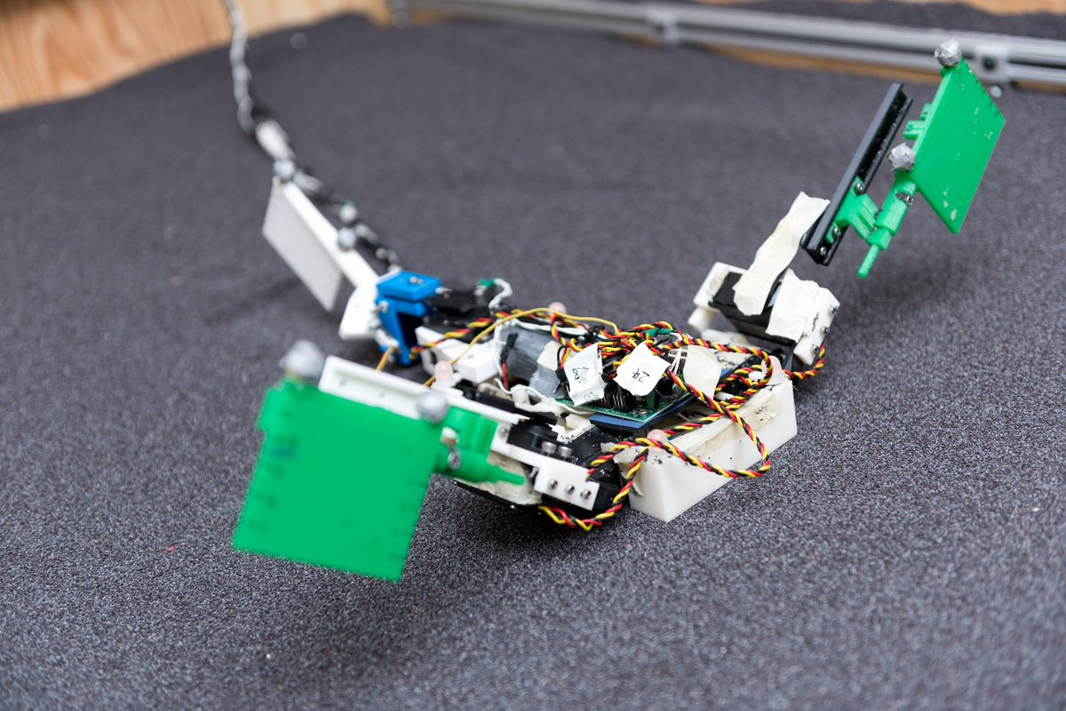 #NSFfunded researchers are using #robot, math models of amphibious fish to explore critical evolutionary leap  http:// bit.ly/2h4TRF5  &nbsp;  <br>http://pic.twitter.com/HLiTJw8wxx