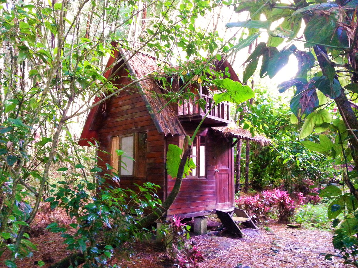 I stayed in this cute cabin in Mindo, #Ecuador - the perfect place to get away from it all! #theonlywayisecuador #livingthedream<br>http://pic.twitter.com/RTMV7MTRYl