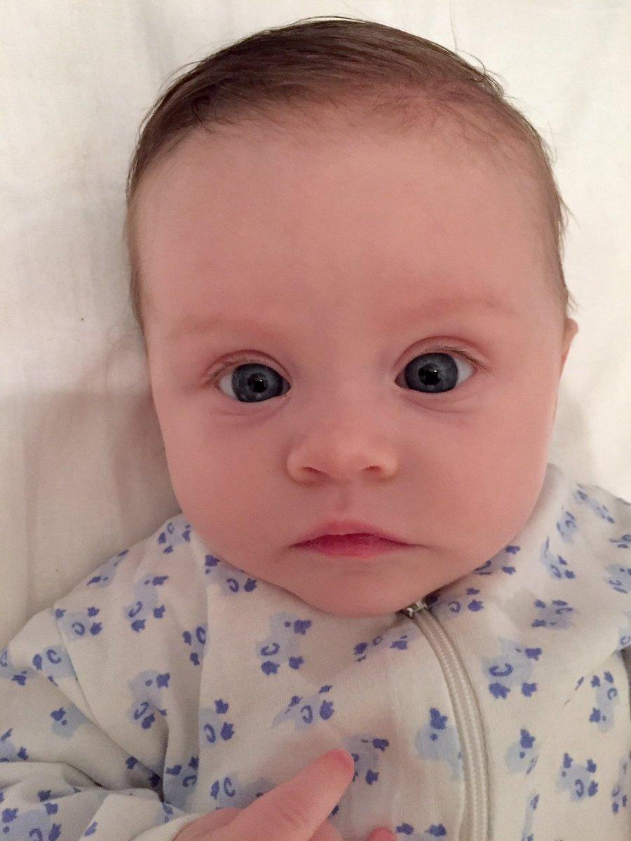 """börje dahrén on twitter: """"kan leverera hårig bebis! håll till godo.… """""""