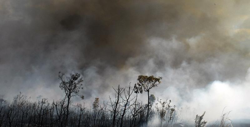 Parque da Chapada dos Veadeiros volta a fechar por causa de focos de incêndio. https://t.co/1NEZRlPP2o 📷 Marcello Casal/ABr
