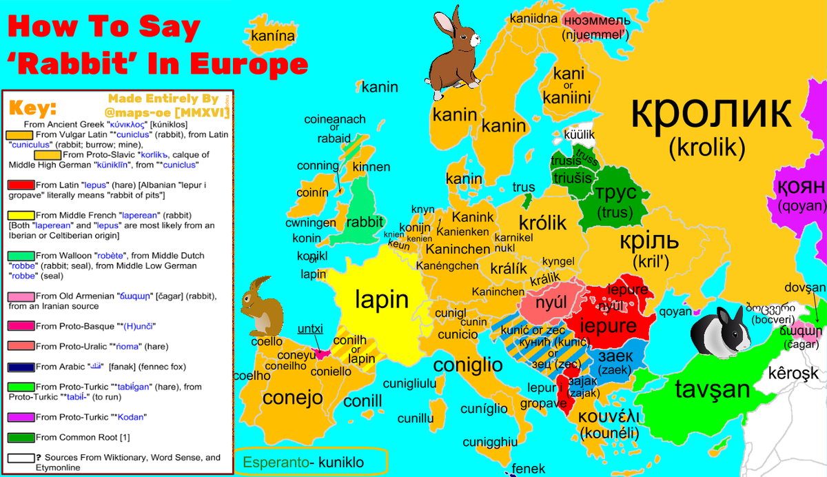 Very bright #map explains the etymology of the word rabbit across #languages in #Europe. Source:  https:// buff.ly/2xPH7oz  &nbsp;  <br>http://pic.twitter.com/t7m9Z4oLoB