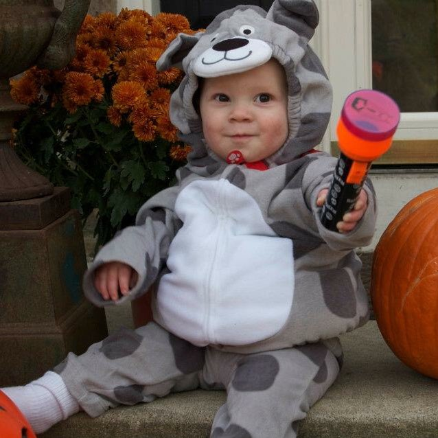 #tbt to Gavin's puppy Halloween costume!  <br>http://pic.twitter.com/OELrqnT0lF