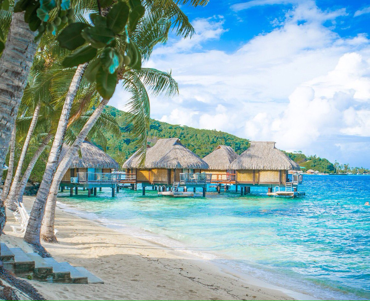 50 Years of Overwater  Bungalows Tahiti #Tahitioverwater50th #LuxuryTravel  #ThursdayThoughts<br>http://pic.twitter.com/iURb2FfIFK