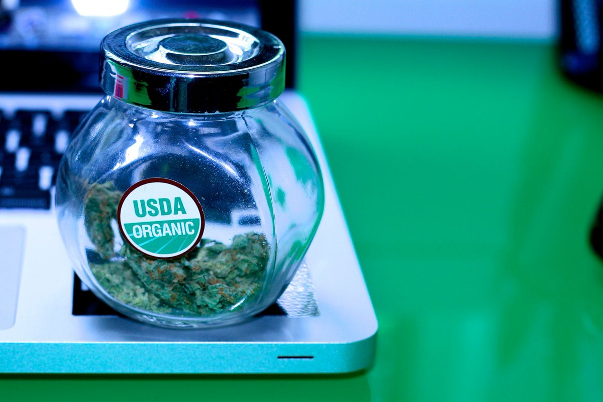 DC weed telemedicine startup is expanding to New York, Maryland &amp; Pennsylvania   https:// buff.ly/2yCeIWZ  &nbsp;   #startups #health #cannabismedicinal<br>http://pic.twitter.com/o34IzXIqNm