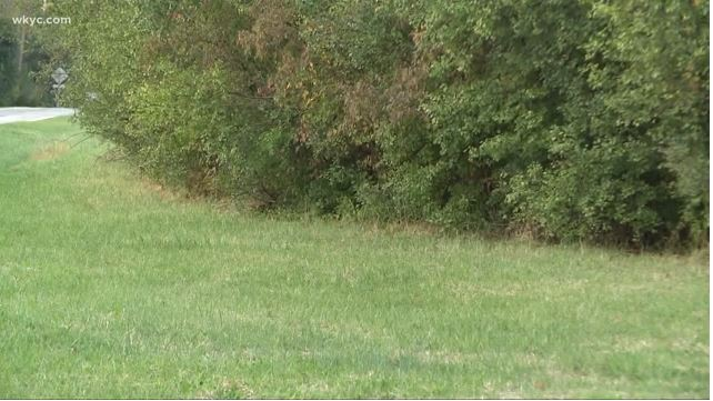 Human remains found in woods of Lorain County https://t.co/frmwvxuiHA