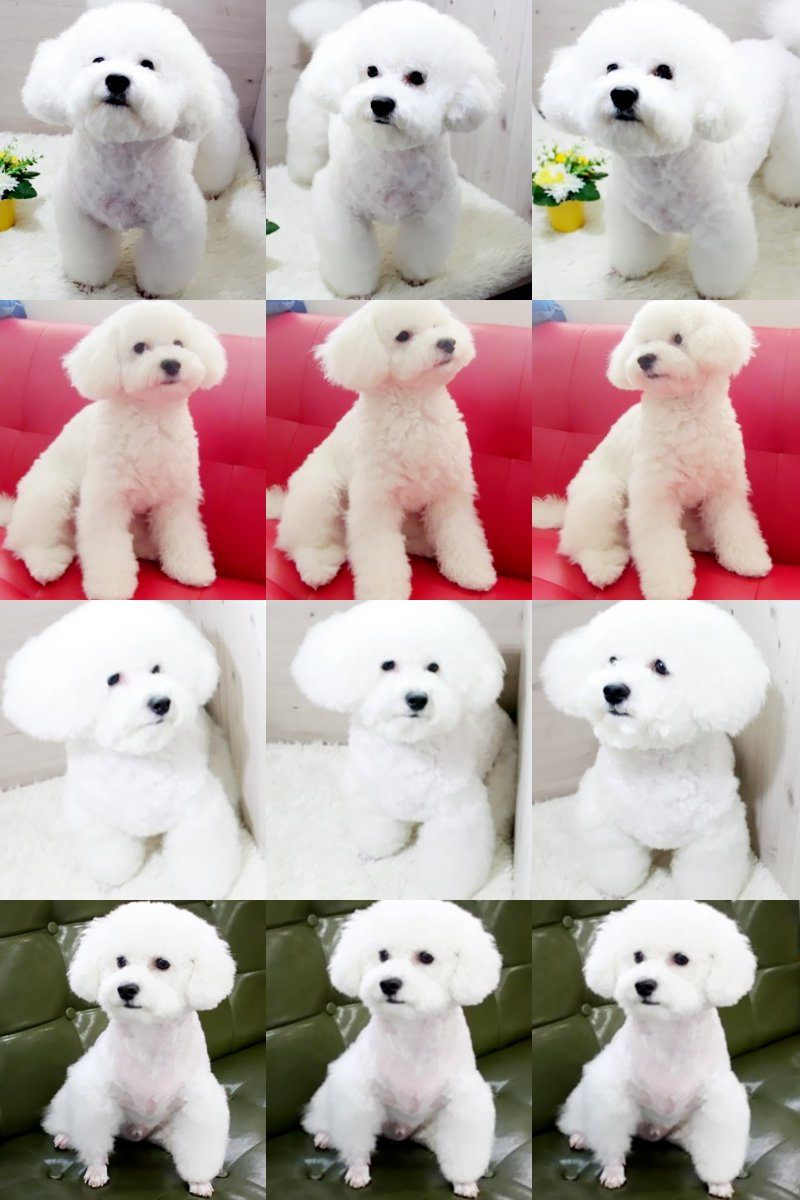 [DOWNLOAD] 강아지 그리고 스토리 NAVER BLOG: VIVI (49P)