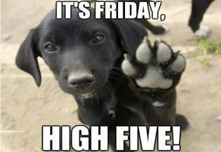 Happy Friday!  #FridayFeeling #FriYAY <br>http://pic.twitter.com/zKc6T6dbvS