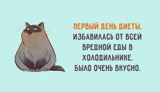Статусы о похудении смешные с картинками, бумаги