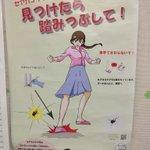 名古屋市のセアカゴケグモ対策がワイルドすぎる!