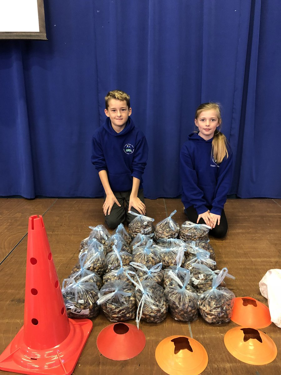We have been collecting acorns for Natural Resources Wales #savetheplanet #healthyschools @EcoSchoolsWales House competition <br>http://pic.twitter.com/gcJhUcgLzj
