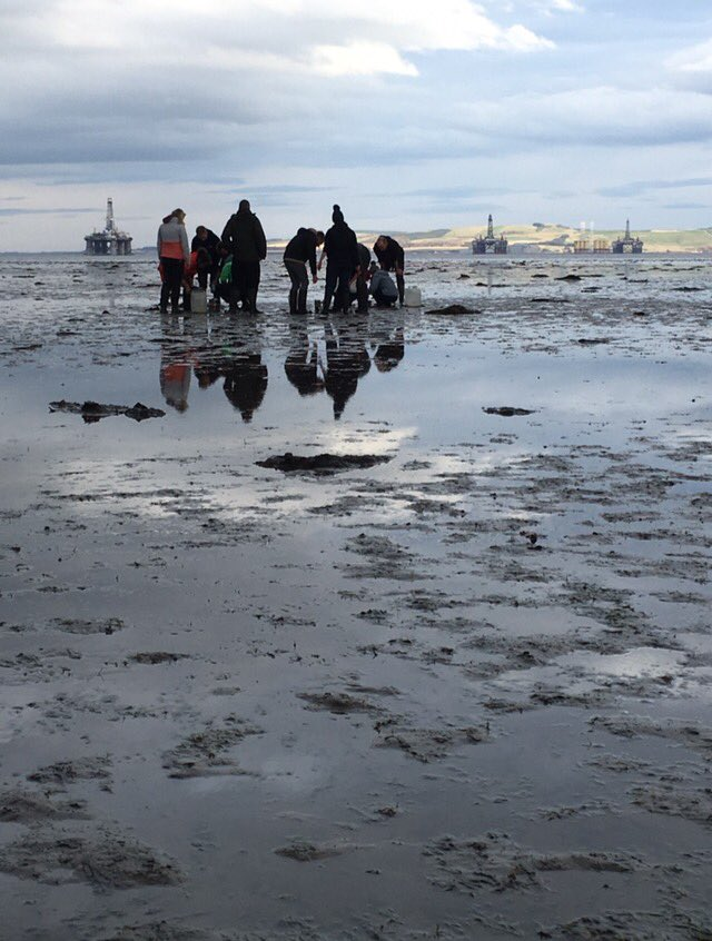 Teaching foreshore invertebrate monitoring in Udale Bay #SPA with @RSPBNorthScot  @MSc_aquaticUCL @UCLgeography<br>http://pic.twitter.com/7BX79WOZHN