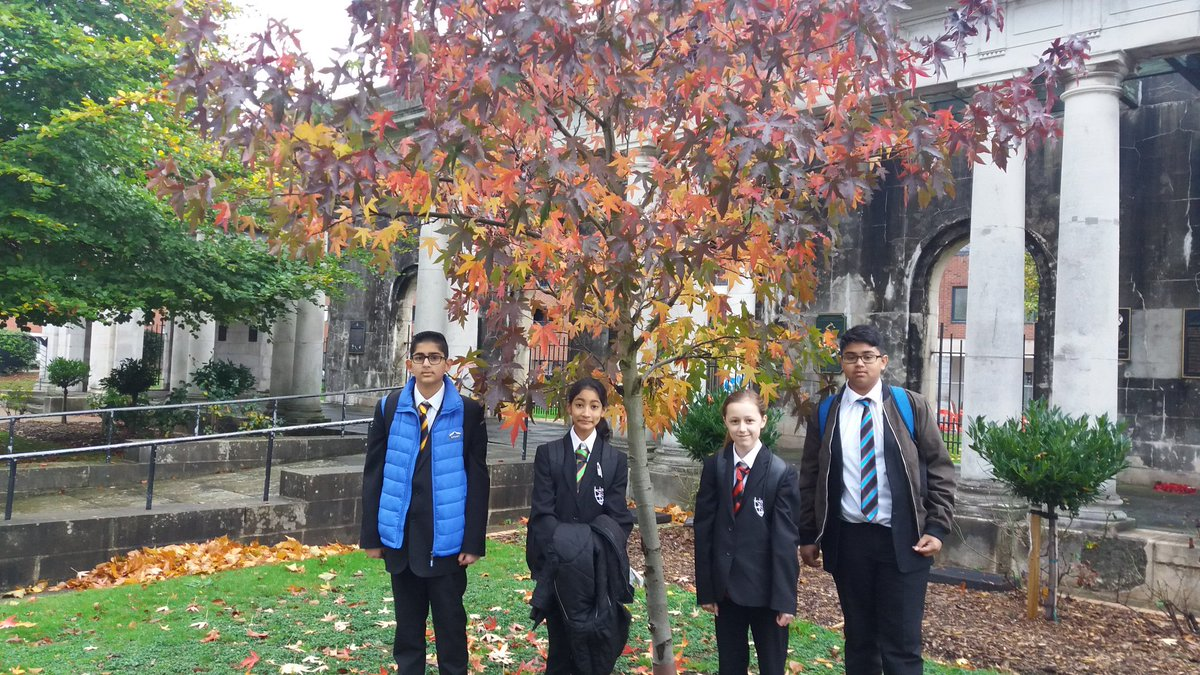 Students from elm alder beech and yew with their favourite tree. #mapleclap #envy <br>http://pic.twitter.com/lYQ2R6pDGU