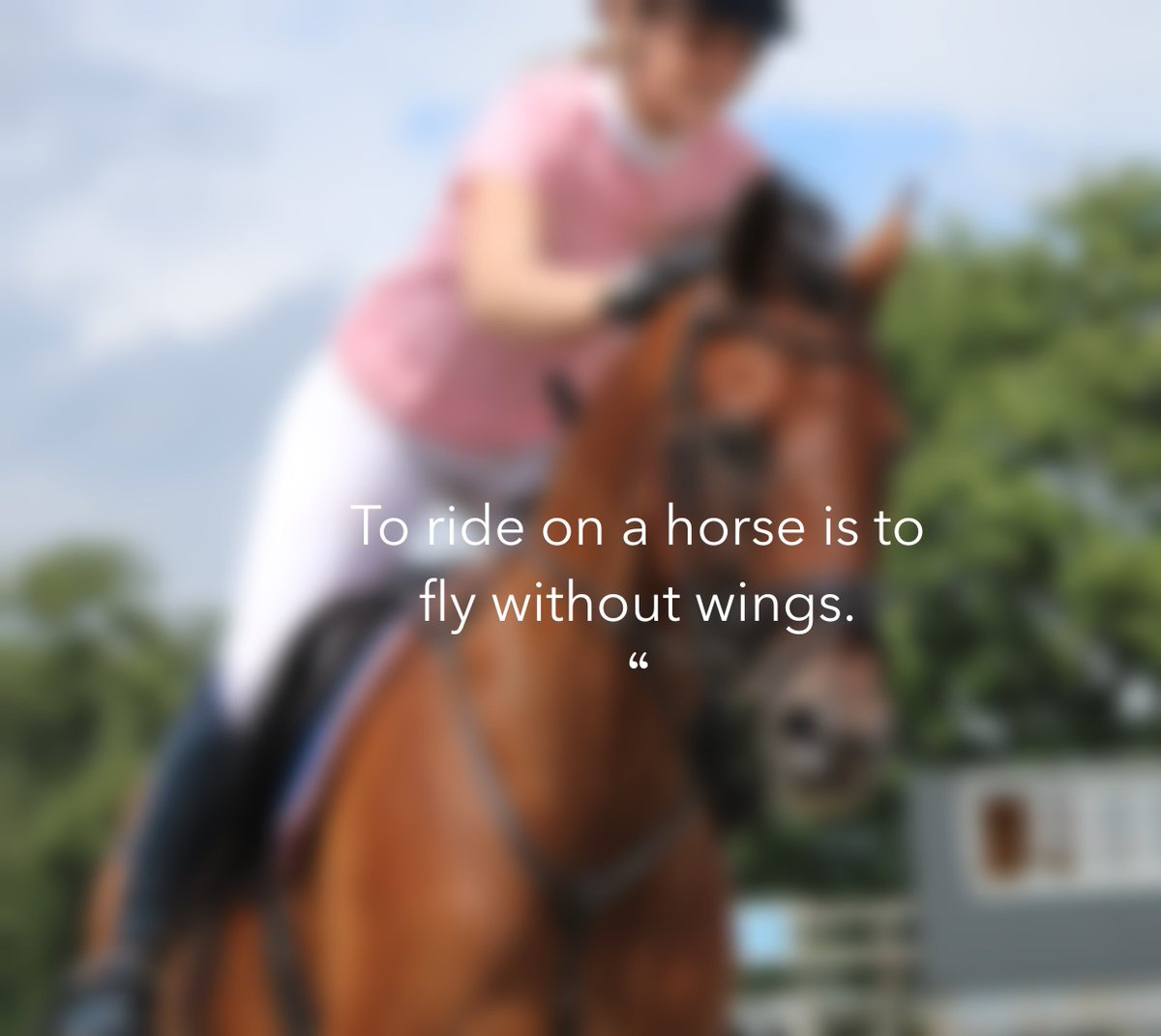 To ride on a horse is to fly without win...