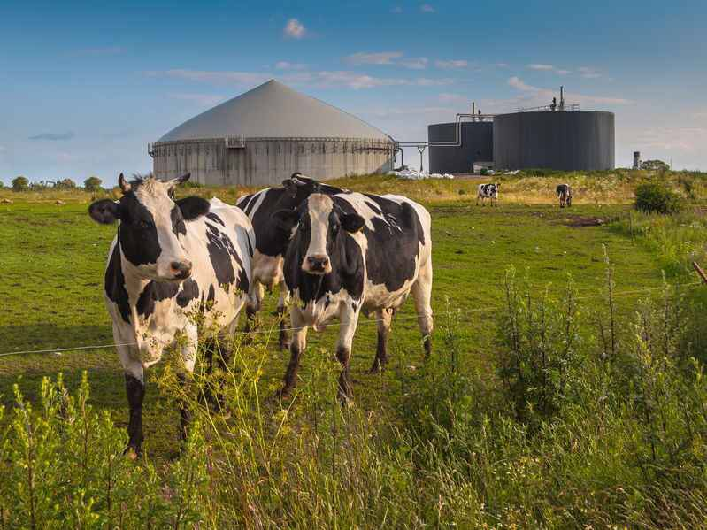 On-farm energy could help fuel 'millions...