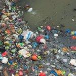 Plastik gefährdet Ökosystem der Ozeane, Tiere verenden grausam. Dr. Ralph Kadel zeigt Lösungen https://t.co/dJDbwq2FyL #Umweltverschmutzung